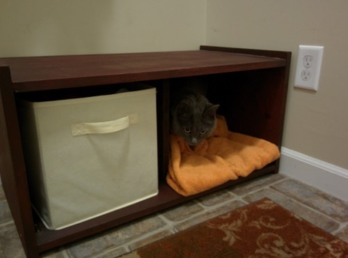 Cat lies in storage shelf bench with orange blanket