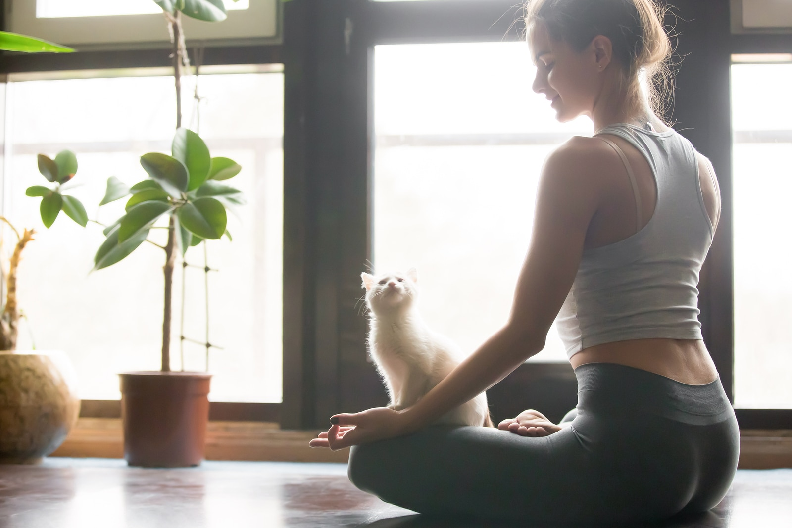 Blonde woman sitting in a yoga position as white cat looks on interested.