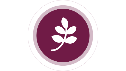 Fiber-Based Therapeutic Foods icon